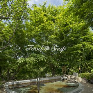 養老渓谷の落ち着いたおしゃれな温泉旅館!のイメージ